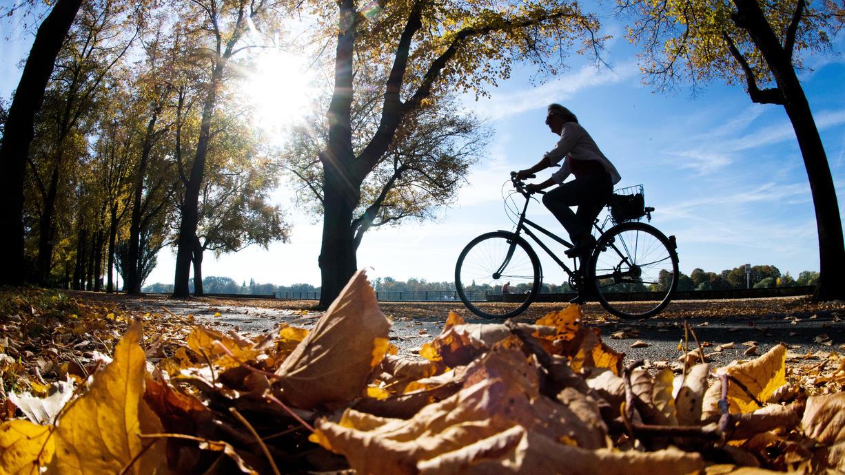 Noch ein letztes Mal goldenen Oktober genießen, heißt es bis zum Freitag. Trotz ein wenig Regen hier und da, setzt sich noch immer die Sonne durch. Am Wochenende ändert sich das allerdings grundlegend.