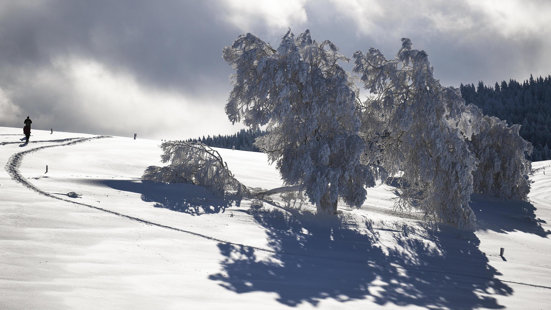 Wetter Im Schwarzwald 14 Tage