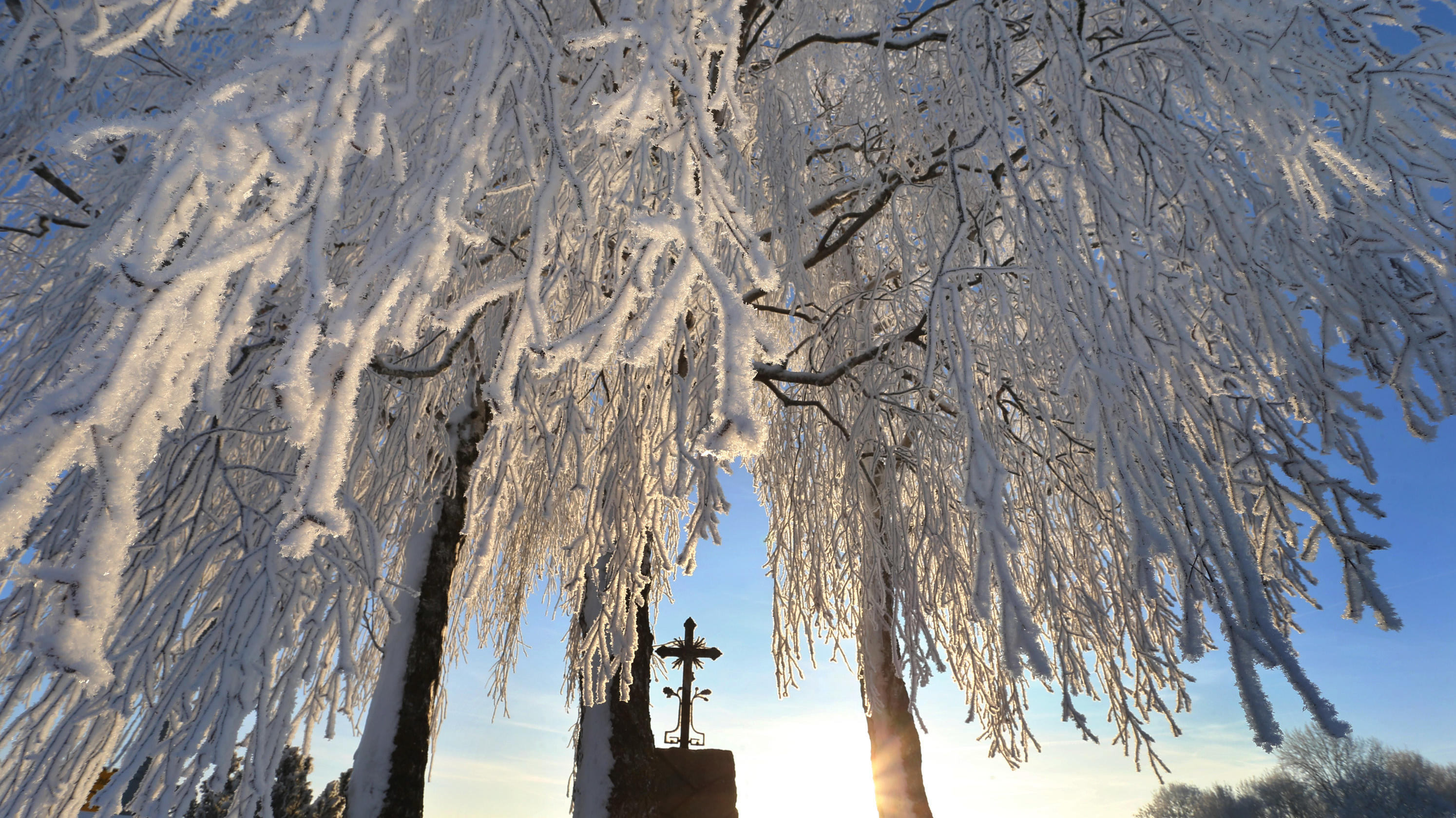 Wetter Frost