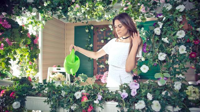 So klappt es mit der Blütenpracht: Welche Pflanzen sich für welchen Balkon eignen und worauf Sie achten sollten.