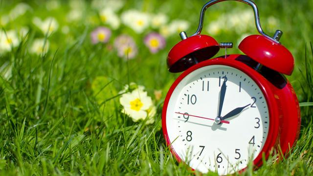 Zweimal im Jahr stellen wir uns diese Frage: Wann wird die Uhr vorgestellt - und wann zurück? Diese Eselsbrücke helfen bei der Zeitumstellung.