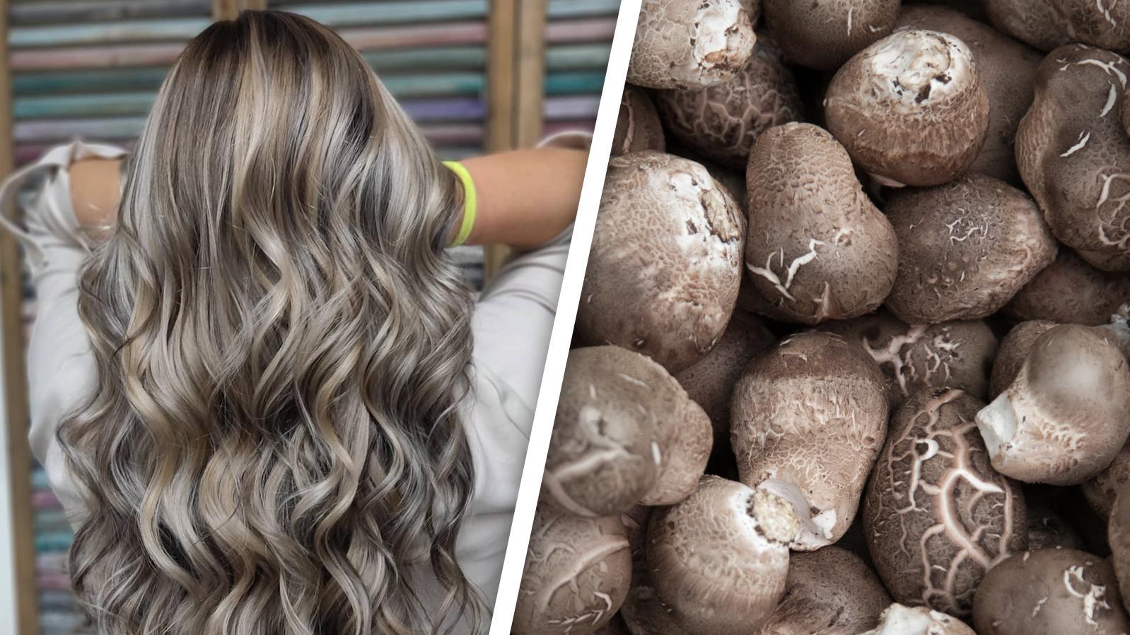 Haarfarbe zwischen blond und braun