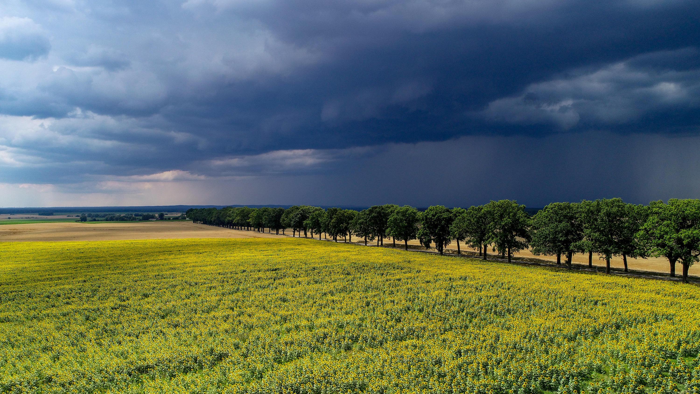 Wetter Gorxheimertal 7 Tage