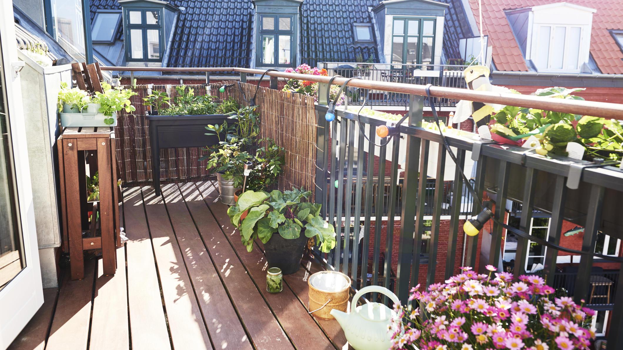 Sichtschutz für Ihren Balkon: 4 Möglichkeiten für mehr ...