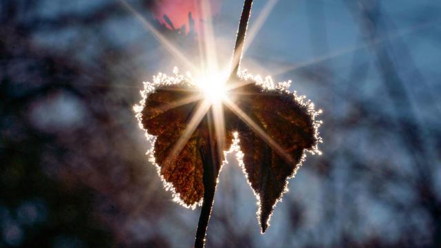 Grundsätzlich wird die Frühlingssonne zwar auch in der zweiten Wochenhälfte ein gehöriges Wörtchen mitzureden haben. Aber sie bestimmt nicht alleine unser Wetter.