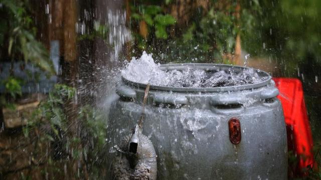 In jeden Garten gehört eine Regentonne. Das spart Trinkwasser, Geld und ist besser für die Pflanzen. Wir verraten Ihnen, was Sie beim Kauf einer Regentonne beachten sollten.