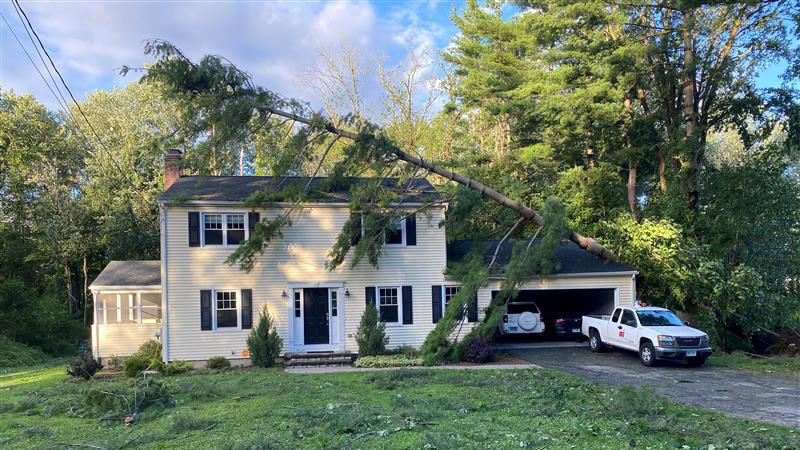A pine tree lies across a home in the aftermath of Tropical Storm Isaias in Newtown, Connecticut, U.S., August 4, 2020. REUTERS/Dan Burns