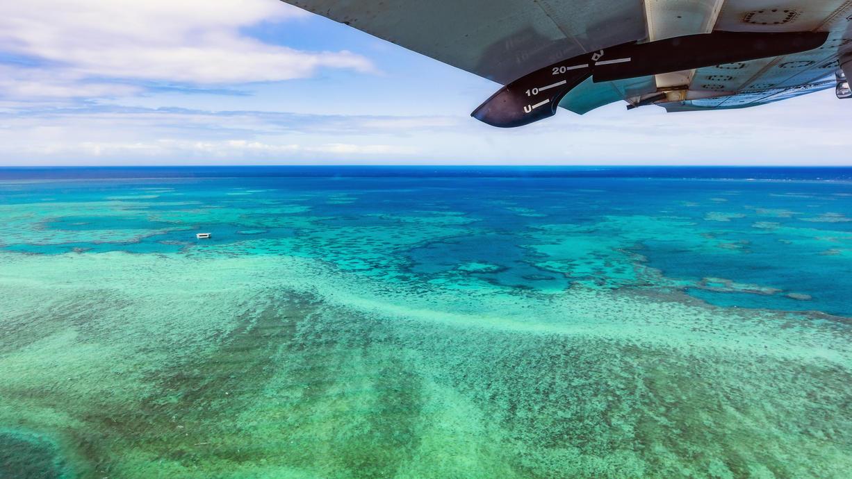 Meeresforscher haben zum ersten Mal seit 120 Jahren ein riesiges, freistehendes Korallenriff in Australiens weltberühmtemGreatBarrierReef entdeckt. Das Riff sei mehr als 500 Meter hoch - und damit höher als das Empire State Building in New...