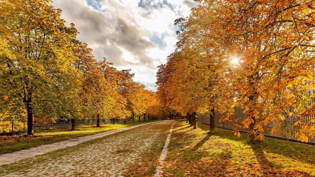 Wir groß ist der Einfluss von fallendem Laub auf die Geschwindigkeit der Erde um die Sonne? Gerade jetzt, wenn mit dem beginnenden Herbstwetter die Blätter von den Bäumen fallen, kommt die Frage wieder auf.