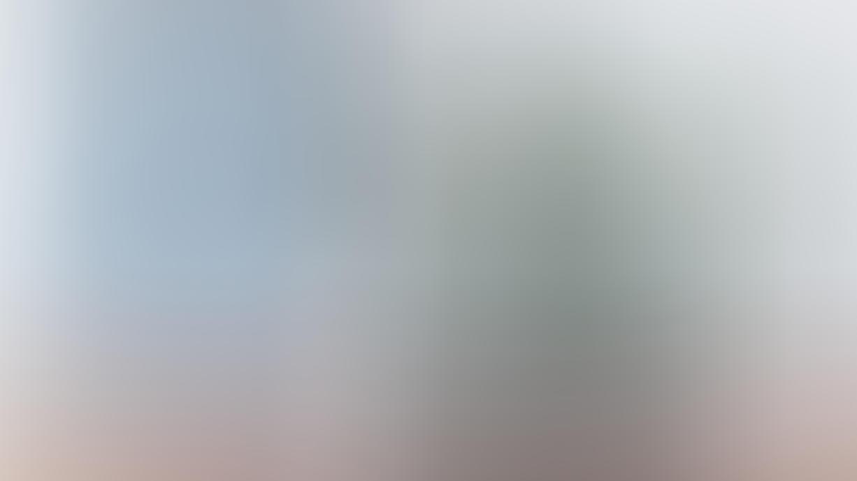 Kein Talent im Umgang mit Pflanzen? Wenig Licht, wenig Wasser: Diese unkomplizierten Gewächse verzeihen es Ihnen!