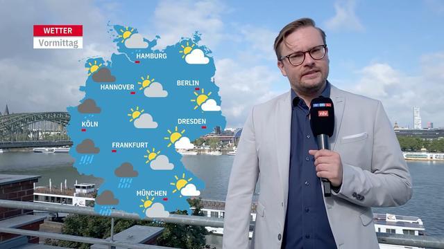Wetter Rotterdam 14 Tage Vorhersage