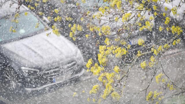 Ist es zu warm oder zu kalt? Wie normal oder unnormal waren die letzten Wochen und Monate und das aktuelle Jahr bisher? Wir vergleichen die aktuellen Messwerte mit dem Klimamittel und schauen auf mögliche Prognosen für das gesamte Jahr.