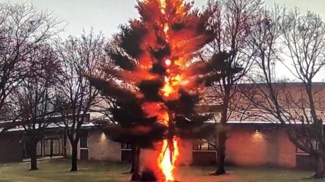 Dieser Blitzeinschlag hat ganze Arbeit geleistet. Auf den Punkt schlägt der Blitz in die Spitze des Baumes ein und pulverisiert ihn in Sekunden.