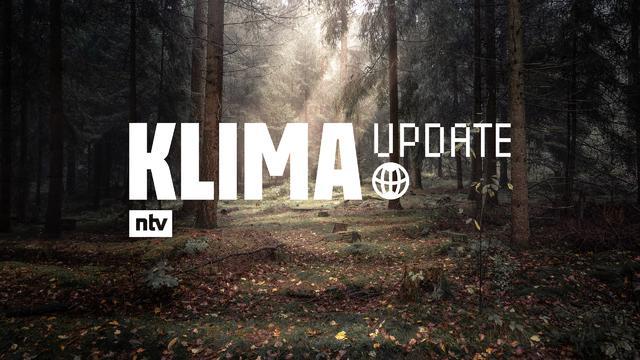 ntv hat ein neues Format: Das Klima Update. Die Sendung schaut auf die Entwicklungen beim Klimawandel und nimmt sich jedes Mal ein konkretes Thema vor: Heute: Der Wald. Das Format läuft um 15.40 Uhr auf ntv, ressourcenschonend produziert.