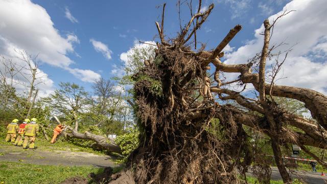 Das Gröbste ist geschafft. Tief Eugen hat auf dem Weg nach Osten seinen Höhepunkt überschritten. Die ganz großen Schäden hat das ungewöhnliche Sturmtief im Mai glücklicherweise nicht hinterlassen.