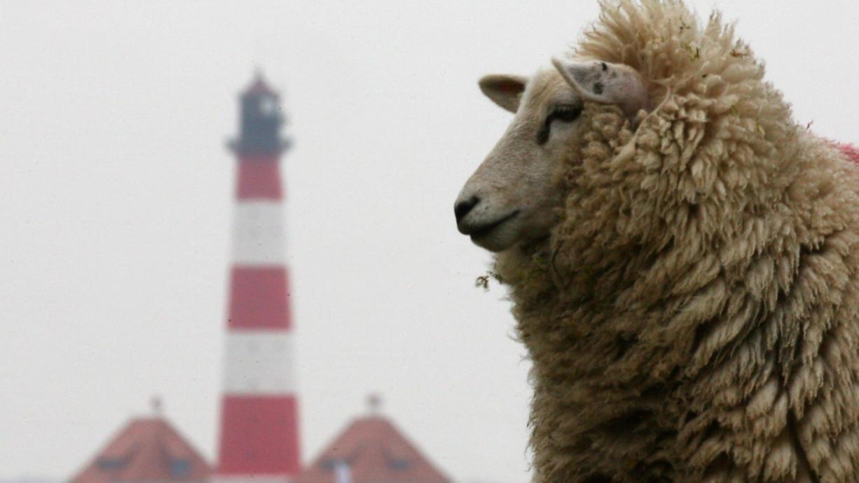 Es scheint wie so oft zu sein: Nachdem der Sommer eine erste Kostprobe hingelegt hat, will sich dieser Trend wohl nicht durchsetzen. Die sogenannte Schafskälte zeigt sich erneut als Spaßbremse.