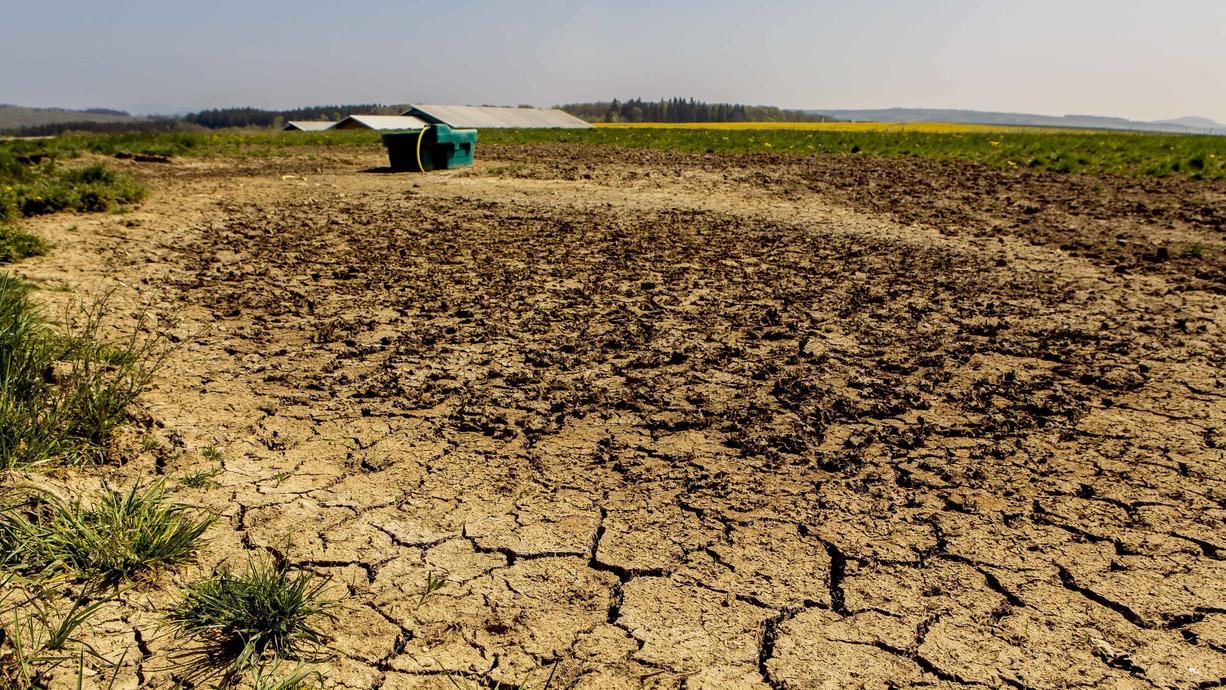 Es regnet gefühlt seit Monaten ohne Unterbrechung. Da dürfte Dürre kein Thema sein, oder? Doch! Denn der Niederschlag kam nicht gleichmäßig verteilt herunter. Es gibt Regionen, die leiden weiterhin unter anhaltender Trockenheit.
