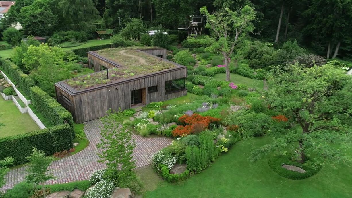 Ein Paradies direkt vor dem Haus. Der Garten von Familie Dammermann aus Gehrden wurde von einer Fachzeitschrift  zum Garten des Jahres 2021 gekürt. Klingt nach richtig viel Gartenarbeit? Überhaupt nicht!