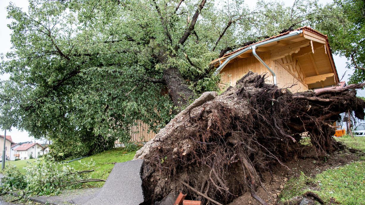 Abgedeckte Dächer, vollgelaufene Keller und umgestürzte Bäume: Das ist die Bilanz eines kurzen, aber heftigen Unwetters mit Starkregen und orkanartigen Böen am Mittwoch im südlichen Oberbayern.