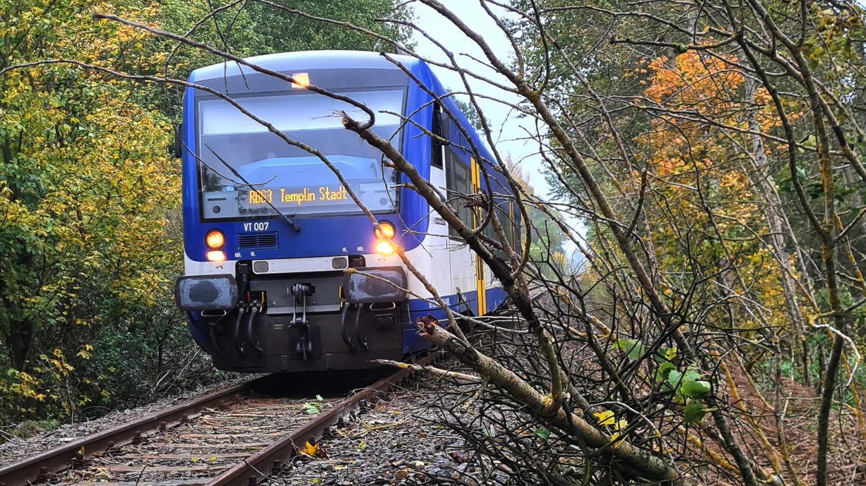 Der Sturm am Donnerstag hat zahlreiche Schäden und Verletzungen angerichtet. Besonders tragisch ist der tödliche Unfall eines Lokführers aus Brandenburg.