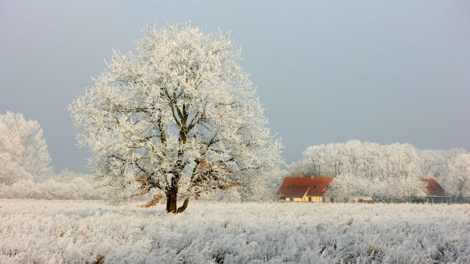 Winter Anfang
