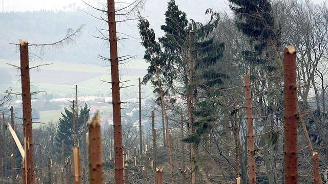 Für die deutschen Versicherer ist nach wie vor 'Kyrill' das verheerendste Wetter-Ereignis der jüngeren Geschichte. Orkan 'Lothar' ist der zweitteuerste Sturm.
