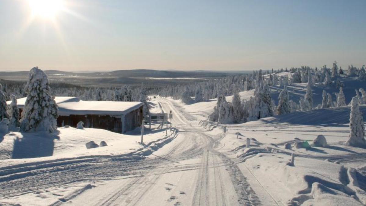 Polarwirbel 2021: Das letzte Aufbäumen des arktischen Riesen - Wetter.de
