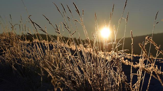 Grundsätzlich wird die Frühlingssonne zwar auch in der zweiten Wochenhälfte ein gehöriges Wörtchen mitzureden haben. Aber sie bestimmt nicht alleine unser Wetter. Denn erste einmal rattert eine Kaltfront durch, die einen langen Nachhall hat.