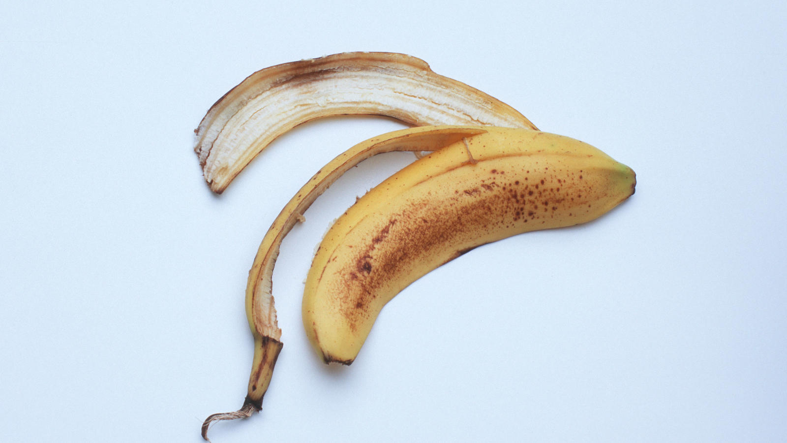 schon gewusst bananenschalen eigenen sich prima als d nger f r rosen