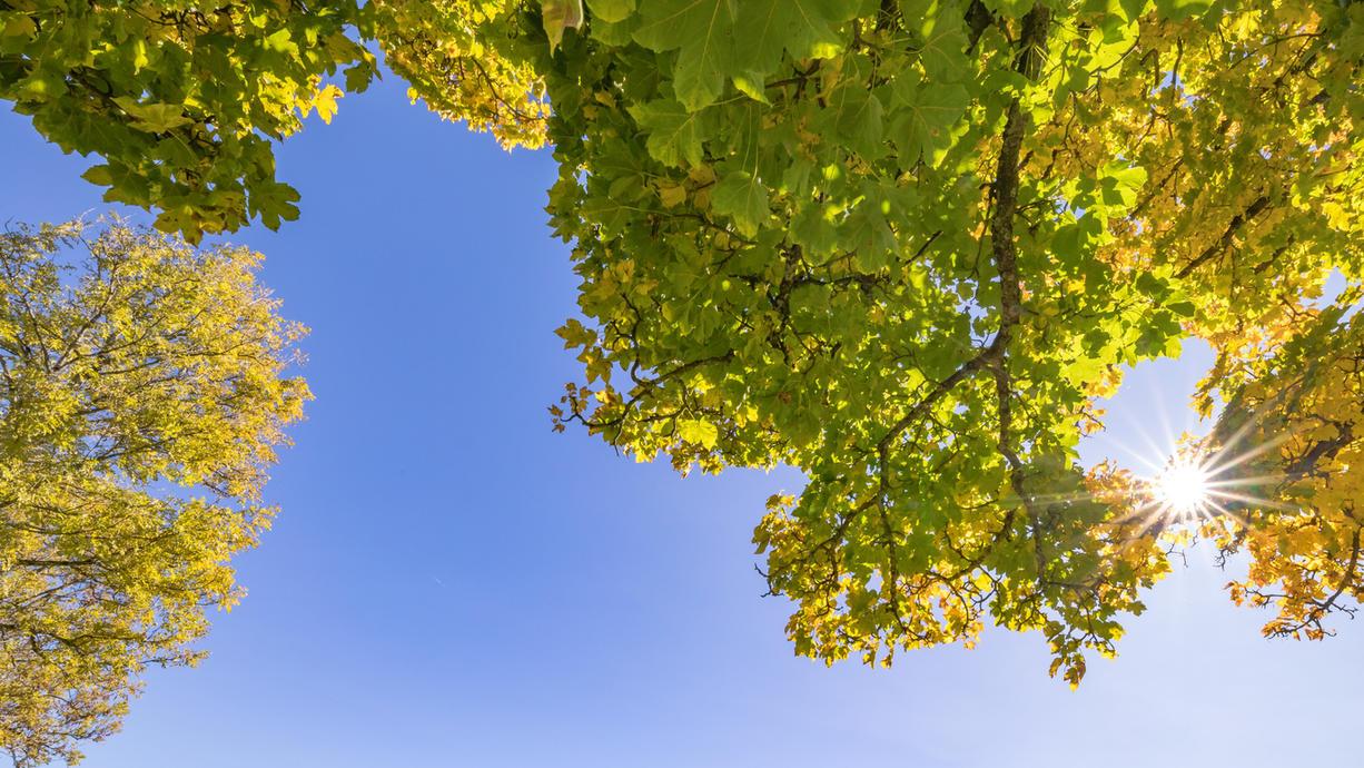 Auf den letzten Metern im September kann sich das Wetter in Deutschland noch nicht ganz entscheiden. Auf der einen Seite steigen mit einem Ableger des Azorenhochs, während den Nordlichtern die Atlantiktiefs auf die PElle