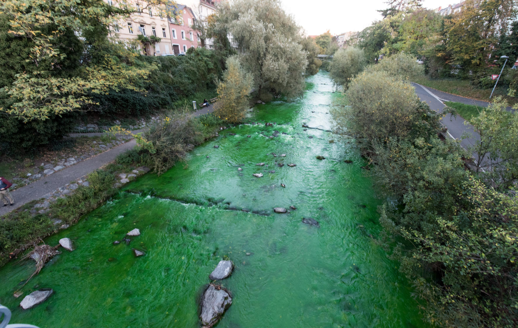 Ratsel Um Giftgrunen Fluss In Freiburg Wo Kommt Die Ganze Farbe