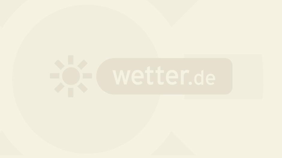höchsttemperaturen in deutschland seit1950