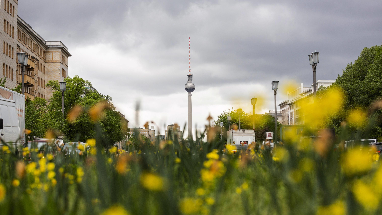 Berliner Wetter Com