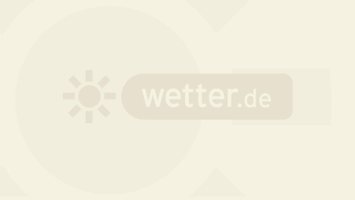 Wetter Holle